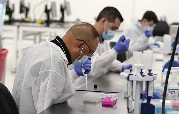 Kaliforniyada virusun naməlum mutasiyası aşkarlandı
