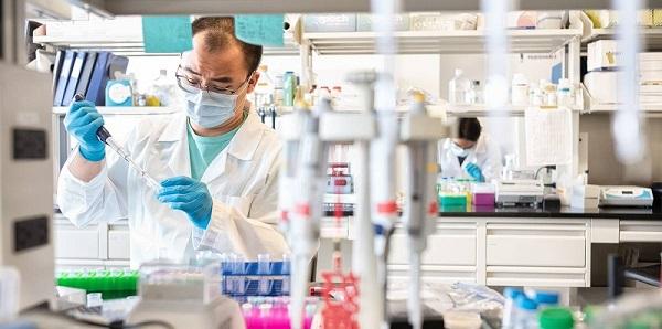 Qocalıq demensiyasının yaranmasında hidrogen-sulfidin rolu dəqiqləşdirilib