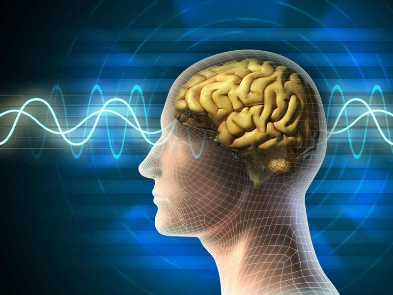 İnsan beyninə çip yerləşdirəcək proqram hazırlanır