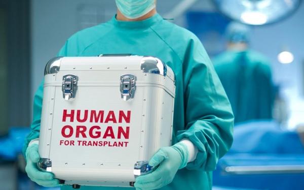 Orqan transplantasiyasıyla bağlı resipiyentin gözləmə vərəqəsinin tərtibi qaydası müəyyənləşib