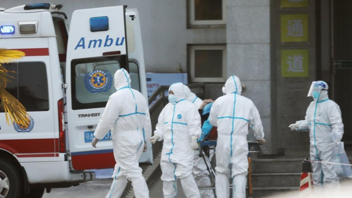 Çində B meymun virusundan ilk ölüm faktı qeydə alınıb