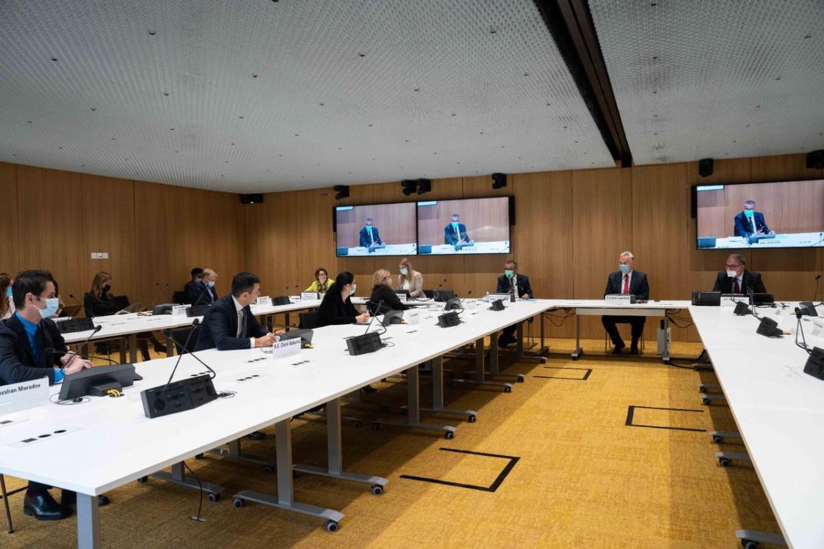 ÜST və Nizami Gəncəvi Beynəlxalq Mərkəzi COVID-19 üzrə işçi qrupunun yaradılması barədə razılaşıb